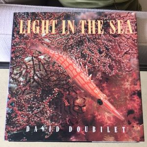 Light In The Sea by David Doubilet
